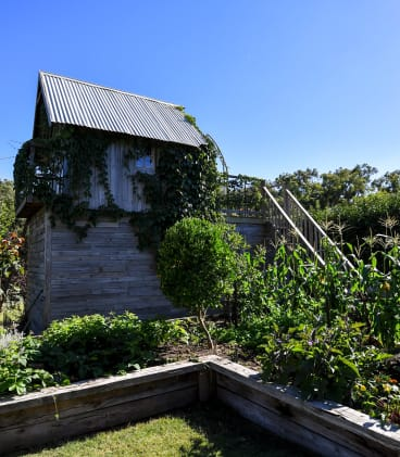 A garden hut in the Forges' garden is partly covered with vegetation.