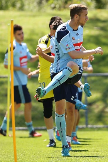 Priorities: Sydney FC's Marc Janko.