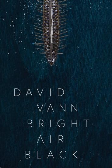 <i>Bright Air Black</i> by David Vann.