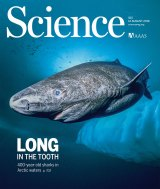 Front cover of <i>Science</i> magazine, August 12.