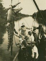 Crocodile hunting in the Northern Territor circa 1930