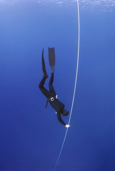 """""""There is a kind of line from what was free-diving in 2011 and what free-diving became after that point."""""""