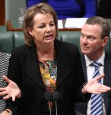 Health minister Sussan Ley during question time at Parliament House in Canberra on Wednesday.