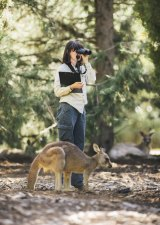Senior government ecologist Claire Wimpenny in Weston Park, where the government has been conducting a kangaroo fertility trial.