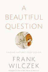 <i>A Beautiful Question</i>m by Frank Wilczek
