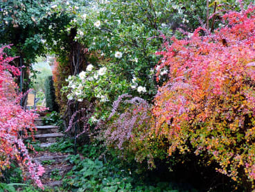 'Wallasey - Beaumaris' garden in Beechworth has been revamped over the past four decades.