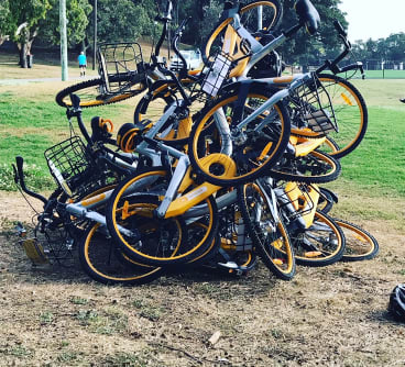 A pile of oBikes at Waverley Oval earlier this month.