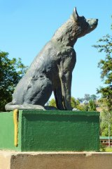 The famous Dog on the Tuckerbox, located just outside the Gundagai township, is now part of the Cootamundra-Gundagai regional area, after the two councils were merged in 2016.