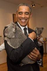 On his second visit to Australia, President Barack Obama cuddles Jimbelung the koala before the start of the G20 meeting in Brisbane on November 15, 2014.