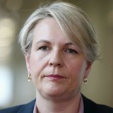 Acting Labor leader Tanya Plibersek has indicated the party's support for a Clean Energy Target (CET).