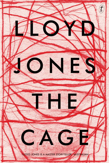 Lloyd Jones' new novel looks at the moral conundrum of history's witnesses.