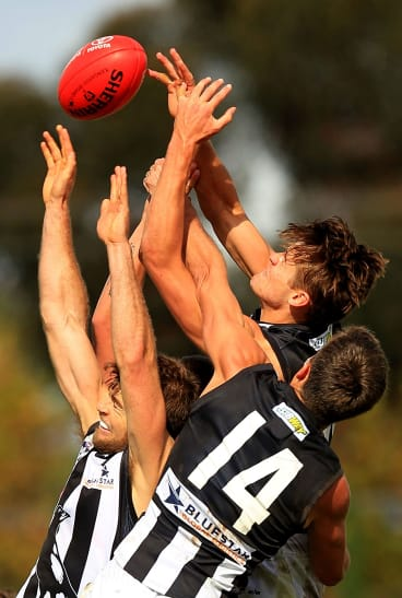 From left: Jeremy Taylor, Clinton Young and Darcy Moore of the Magpies compete in the air during the match against Essendon on Sunday.