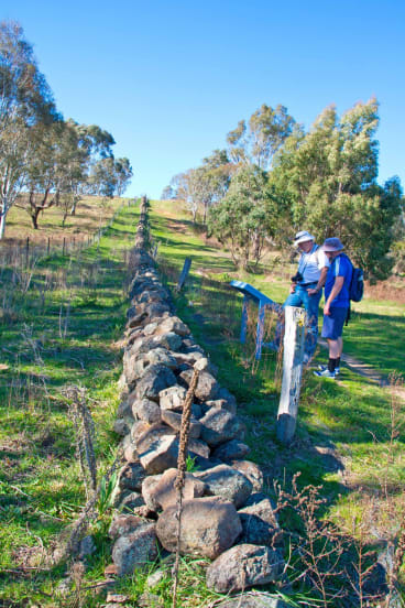 Where in Canberra last week. Congratulations to Glenn Schwinghamer of Kambah, who identified this photo as a 19th-century boundary near Tuggeranong Creek.