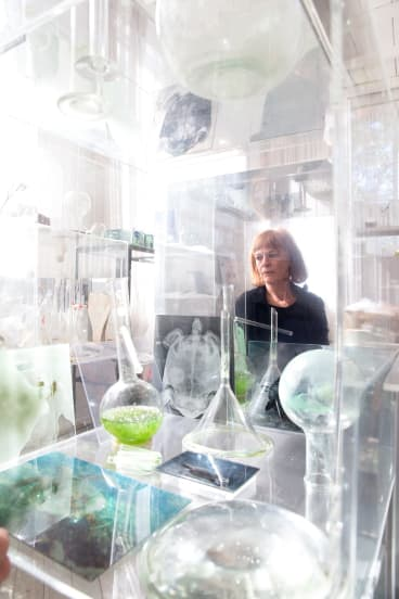 """""""I'm creating a kind of resuscitation space for the Barrier Reef"""": Janet Laurence in her studio in Chippendale."""