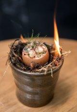 Nomada's signature dish:  clacked egg on burnt hay.