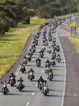 On the road: Police want tougher powers to deal with bike gangs.