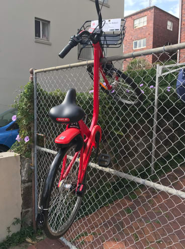 A dockless bike perched on a fence at Coogee in Sydney's eastern suburbs last week..