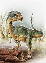 An odd duck: An artist's depiction shows the Chilesaurus diegosuarezi.