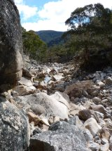 An expert panel recommended as far back as 1998 to remove an aqueduct that would have restored partial natural flows on the Gungarlin.