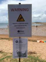 Redland City Council erected signs at Wellington Point alerting swimmers to the venomous Irukandji Morbakka fenneri, after a six-year-old boy was stung and suffered serious welts.