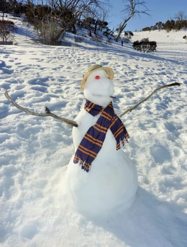 Old timer: The stalwart snowman of Selwyn.