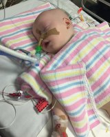 Blake Darragh at 11 months old, in an induced coma.