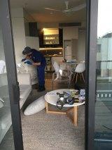 Police go through the ransacked apartment.