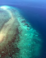Coral bleaching off northern Australia during the 2016 summer.