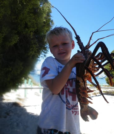 Rottnest is a crayfish-loving kid's playground.
