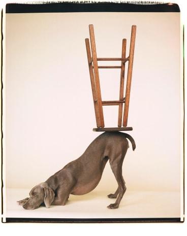 <i>Upside Downward</i>, 2006.
