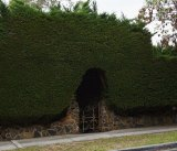 A commanding hedge keeps prying eyes at bay in Ivanhoe.