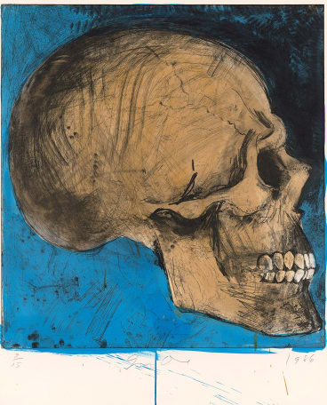 Jim Dine, A Side View in Florida,  1986, hand-coloured etching, soft- ground etching, power-tool abrasion and burnishing, National Gallery of Victoria, gift of the artist.
