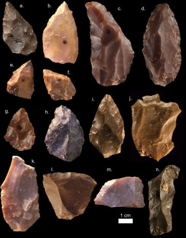 Some of the stone tools from Jebel Irhoud.