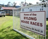 Mouse races are a tourist institution in the Bylong Valley.