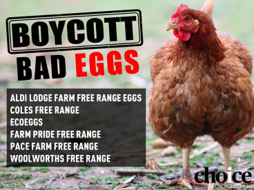 Choice has called for a boycott of free range egg brands that have high stocking densities.