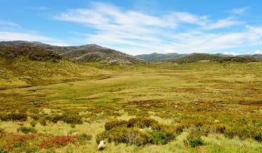View from the Bundian Way near Cascade Hut.