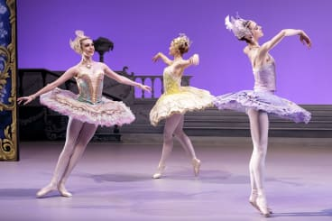 A scene from Storytime Ballet: The Sleeping Beauty.