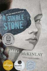 <i>A Single Stone</i> by Meg McKinlay.