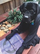 KATE LAIRD: Alfie, a big Harry Potter fan, reading his Good Weekend.