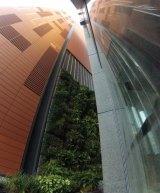 The Vertical Garden.