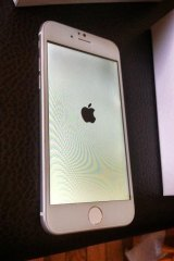 The apparent iPhone 6.