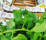 Fresh Warrigal greens and seeds from Bent Shed Produce.
