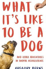 What It's Like to Be a Dog. By Gregory Berns.