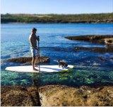 Pete Evans captures his active lifestyle on Instagram.
