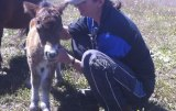 Kerryn Manning with a minature foal.