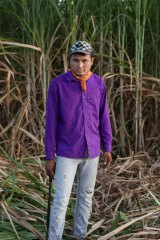 Sugar-cane field worker Jesus Linares, 25, has been diagnosed with the early stages of chronic kidney disease.