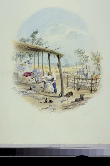 November, from Labours of the Months, c.1840-42, by S.T. Gill, watercolour, National Library of Australia.