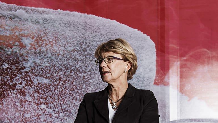 Coca Cola Australia CEO Alison Watkins said CEOs had campaigned on the importance of corporate tax cuts.