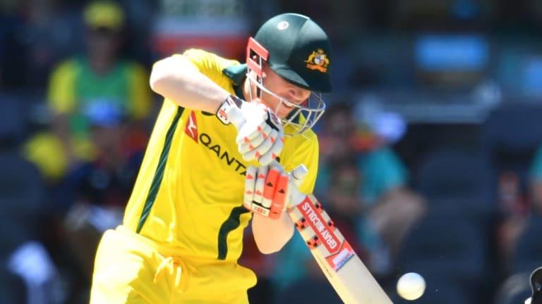 David Warner is Australia's highest-rated ODI batsmen in ICC rankings.