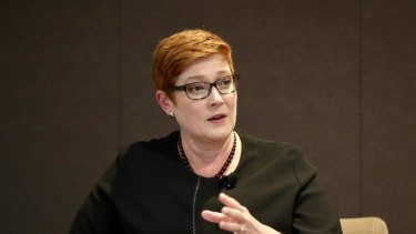 "Minister for women Marise Payne says decriminalising abortion is "" important""."